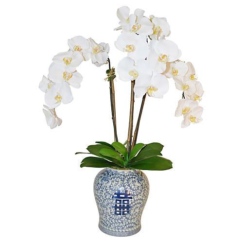 """34"""" Phalaenopsis in Vase, Faux"""