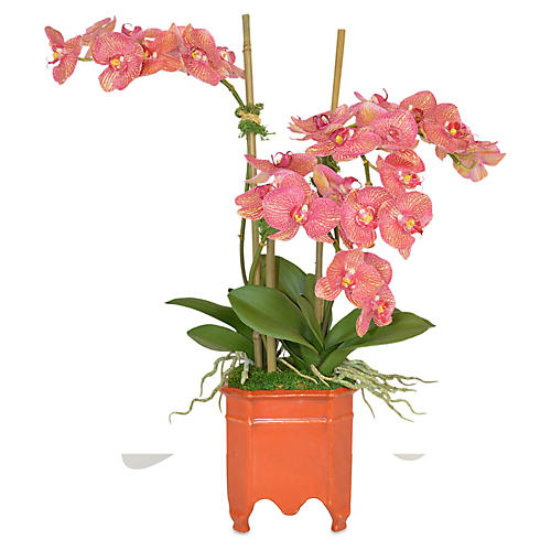 "24"" Orchids Planter Arrangement, Faux"