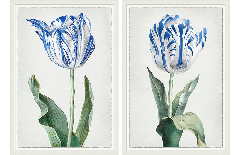 Lillian August, Spring Tulip 1-2