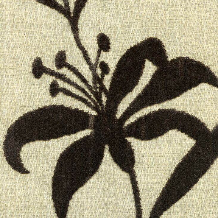 Lily Silhouette Fabric, Brown