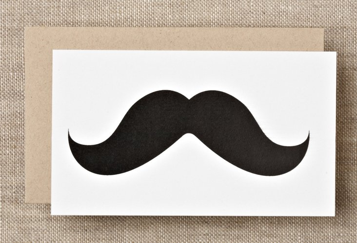 S/16 Mustache Boxed Enclosure Cards