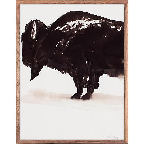 Bison, Joseph Knowles Jr.