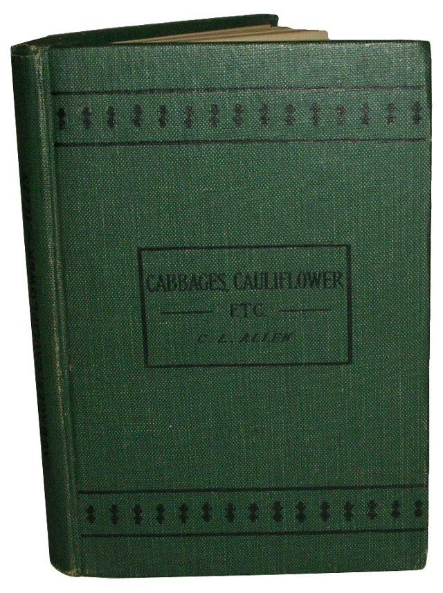 Cabbage, Cauliflower & Allied Vegetables
