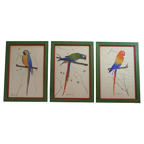 Three French Parrots, S/3