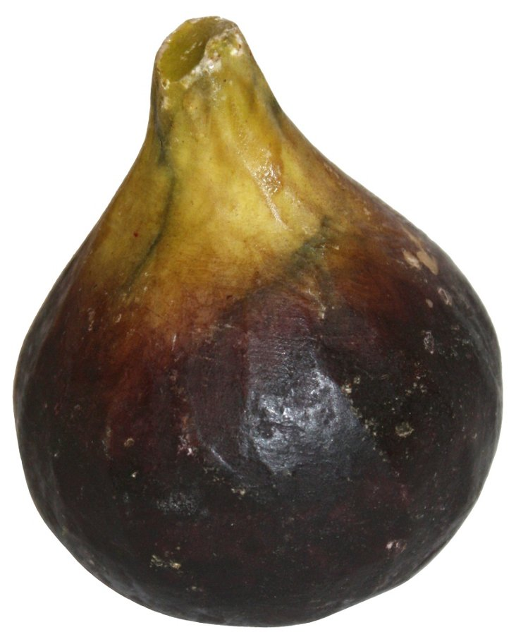 Painted Alabaster Fig