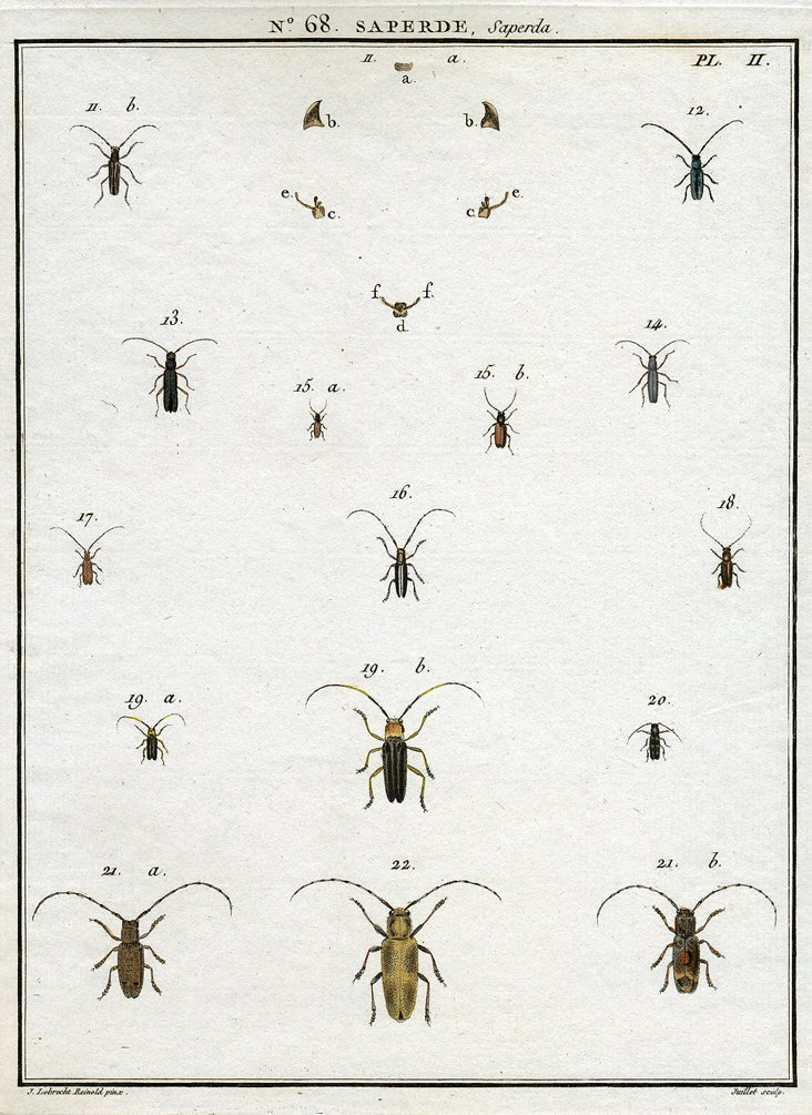 Hand-Colored Engraving, Juillet, C. 1790
