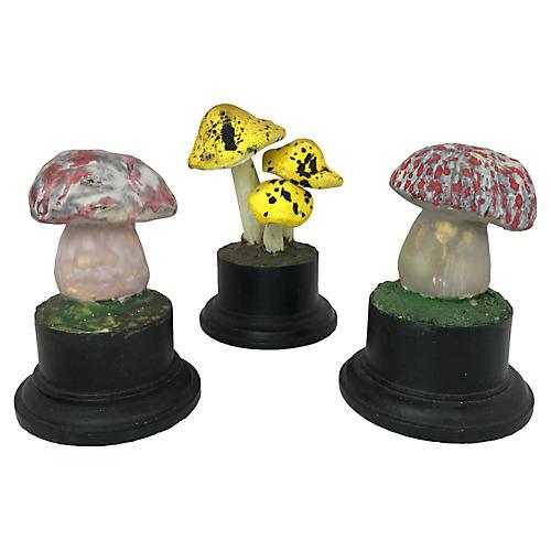 Scientific Model Papier-mâché Mushrooms
