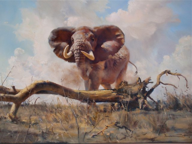 Charging Elephant by Donald Grant