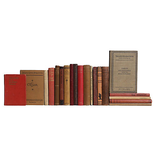 Pocket-Sized Cobblestone Book Set, S/20
