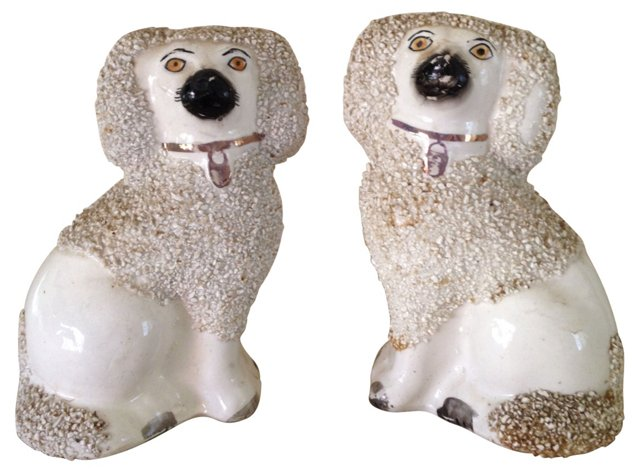 Rough Coat Staffordshire Poodles, Pair