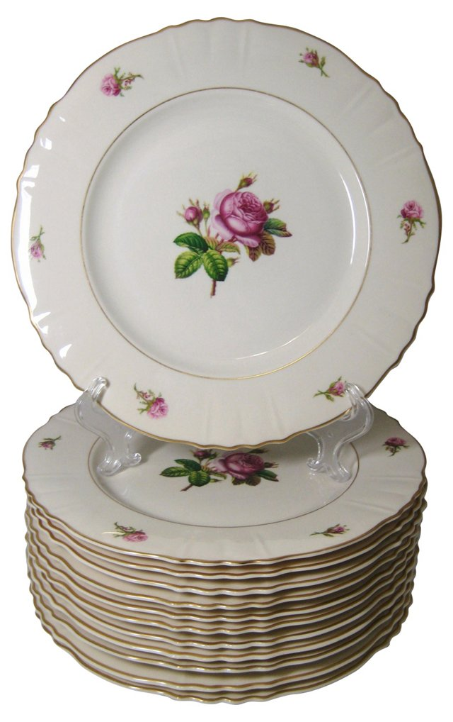 Pink Open Rose Dinner Plates, S/12