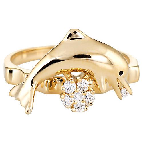 N Teufel Dolphin Spinner Ring