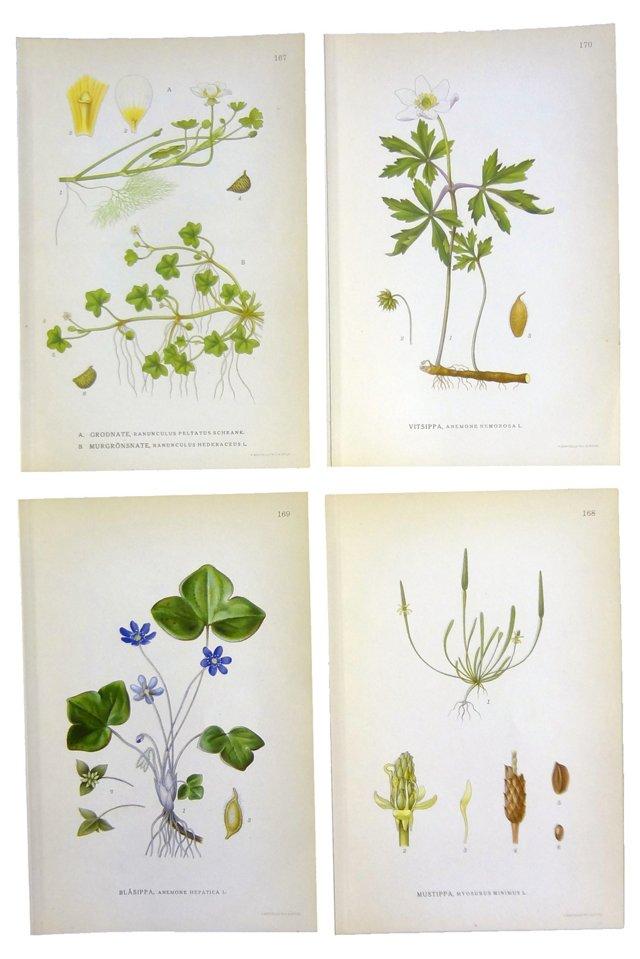 Swedish Floral  Prints,      S/4