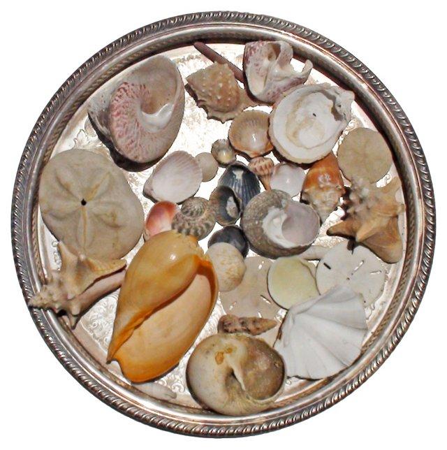 Silverplate Tray w/ Seashells, 34 Pcs