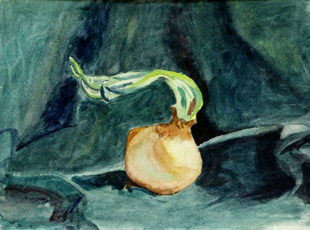 Sprouting Onion Watercolor, C. 1920