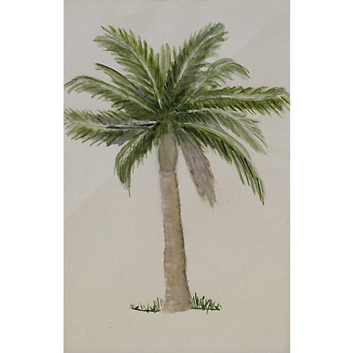 Bungalow Palm, C. 1940