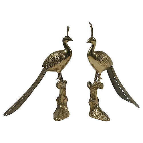Brass Peacocks, S/2