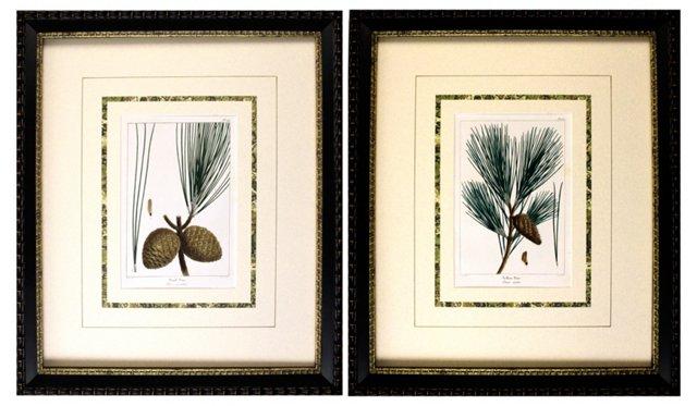 Pine Engravings, 1865,           Pair