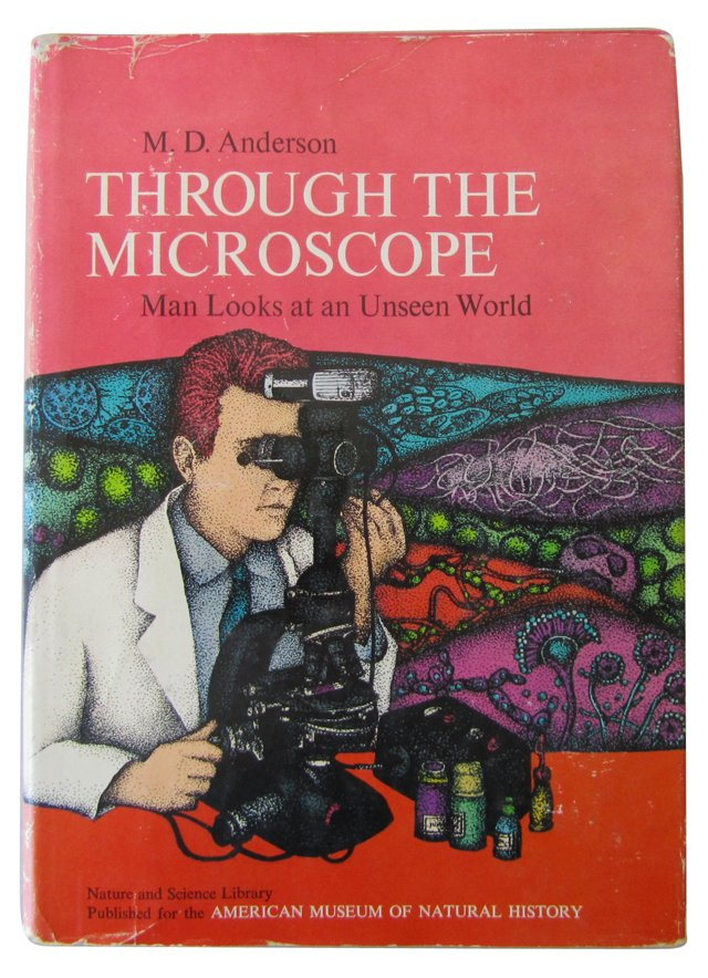 Through the Microscope