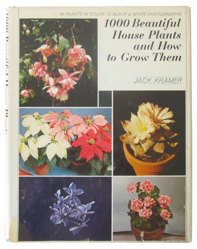 1000 Beautiful House Plants
