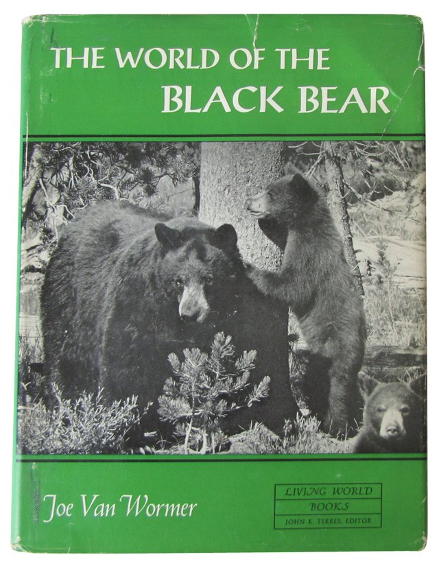 The World of the Black Bear