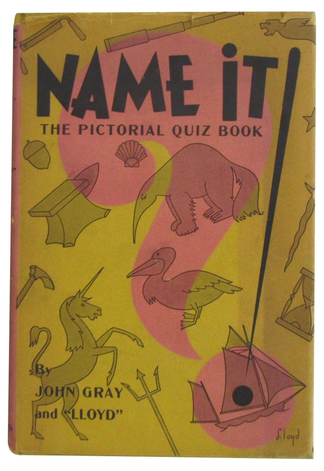 Name It! The Pictorial Quiz Book