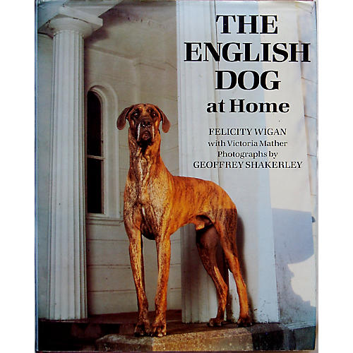 The English Dog at Home, 1st