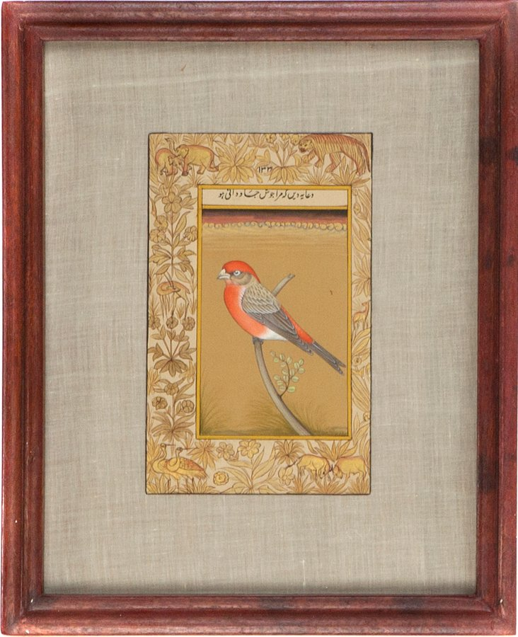Manuscript, Red-Headed Bird