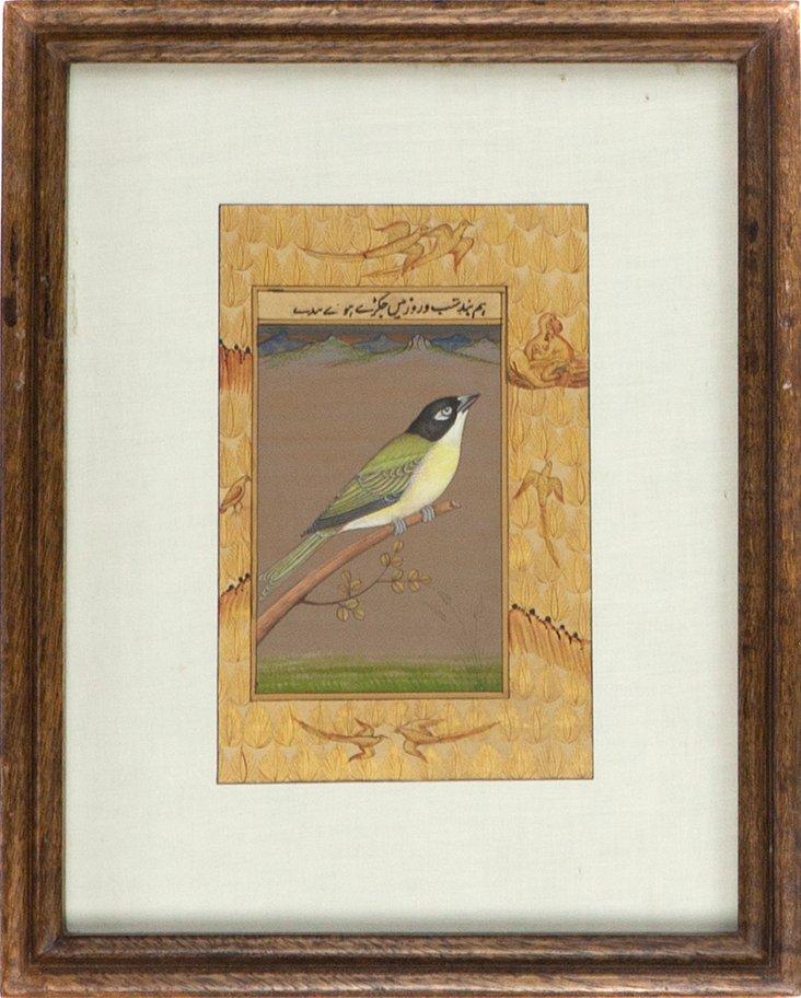 Green & Black Bird on Manuscript