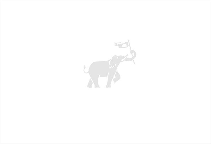 Blue &   White Striped Dhurrie, 6' x  9'