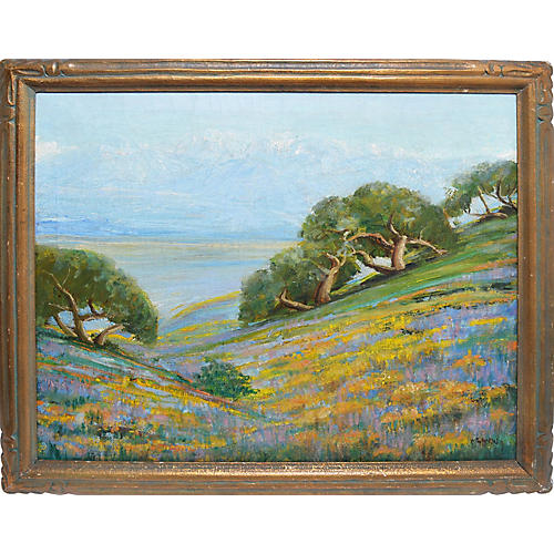 California Valley with Wild Flowers