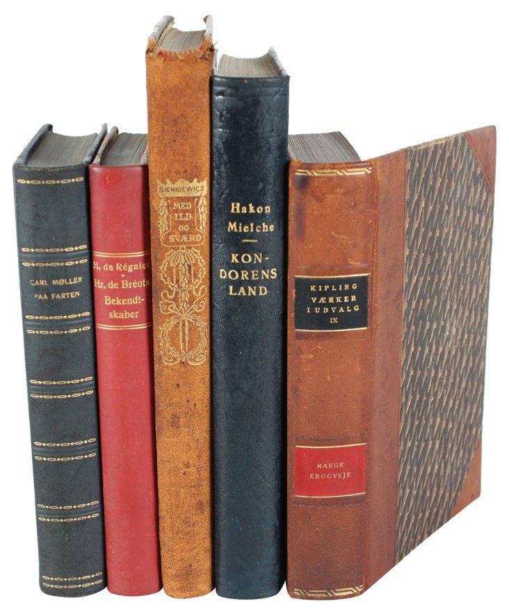 Designer Leather Books XLII, Set of 5