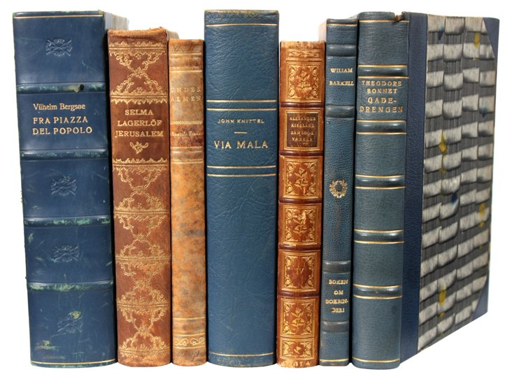 Leather Books, Blue & Brown, S/7