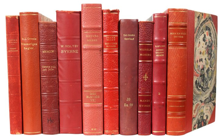 Decorative Leather Books, Red, S/10