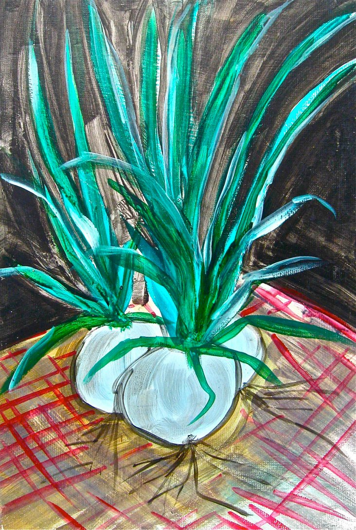 White Onions on Red Check Cloth