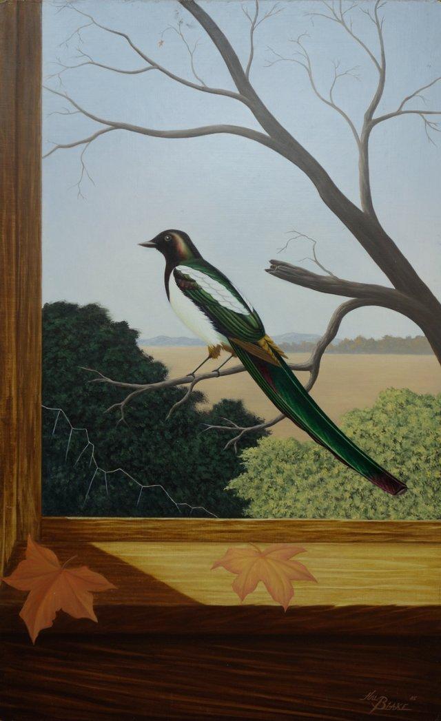 Bird Through the Window by Hal Blake