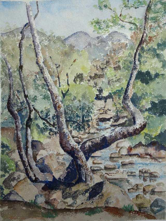 Tree by the Creek by Winifred Morton