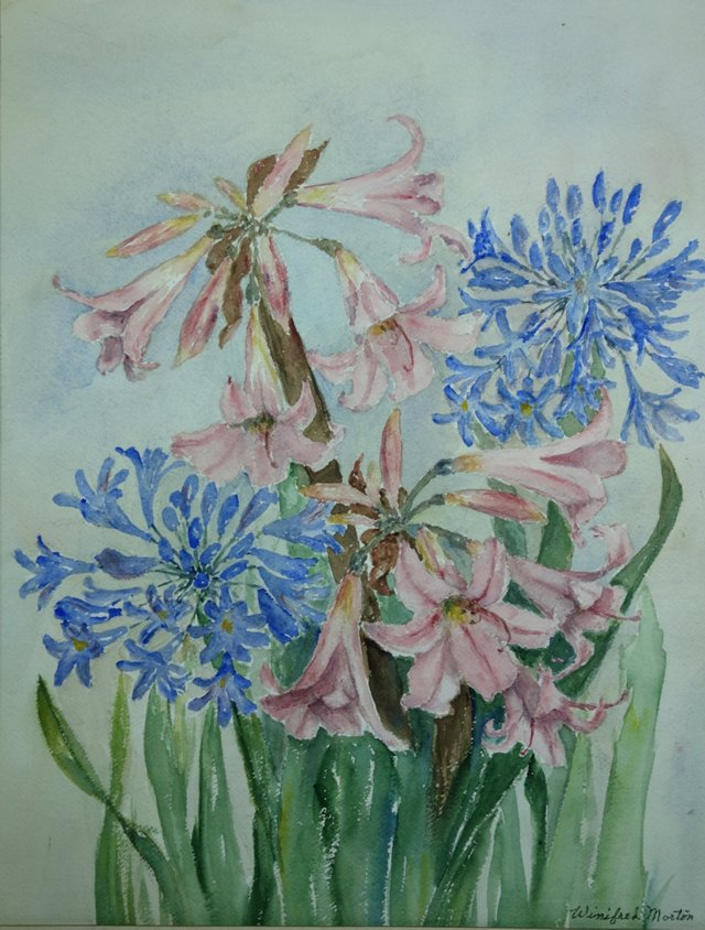 Agapanthus & Lilies by Winifred Morton