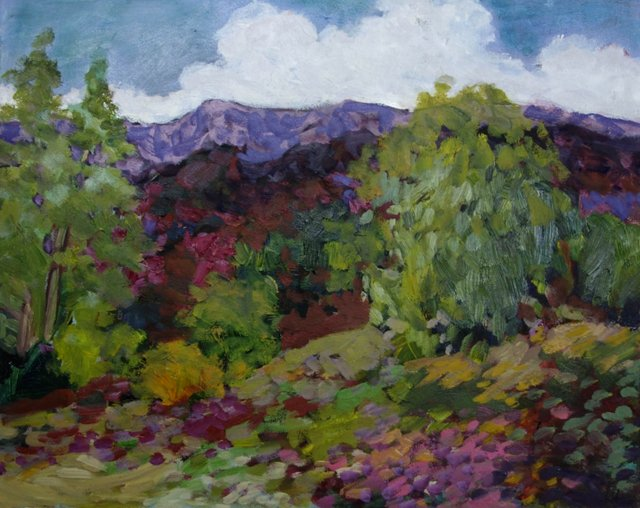 Sumptuous Mountain Blooms