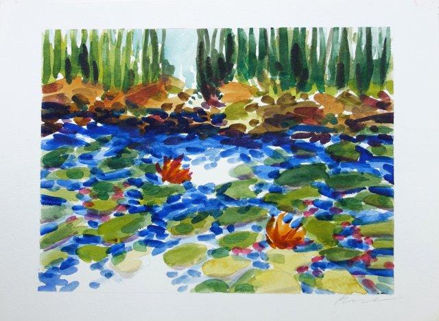 Waterlilies by Barbara Winkler