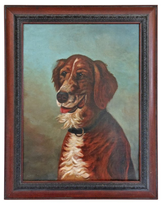 Noble Dog Portrait