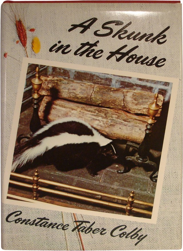 Taber Colby's Skunk in House, Signed