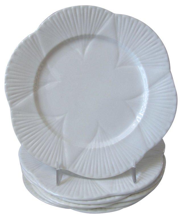 Shelley Porcelain Plates, S/6