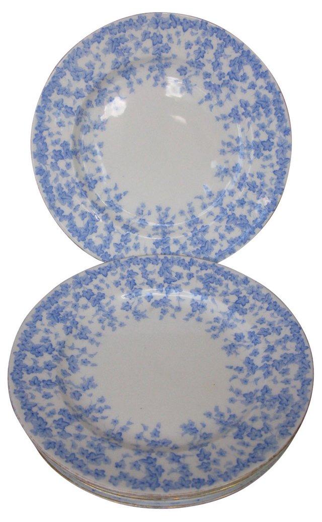 Royal Worcester Floral Plates, S/6