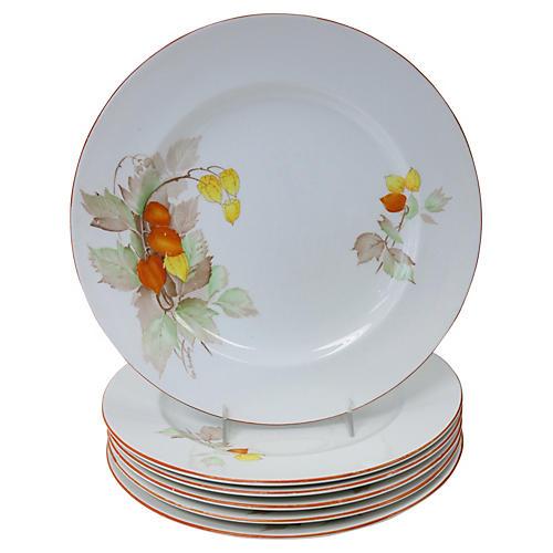 Shelley English Porcelain Plates, S/6