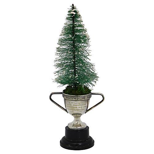 Bottlebrush Tree / 1939 Saxophone Trophy