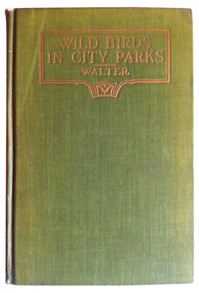 Wild Birds in City Parks, 1926