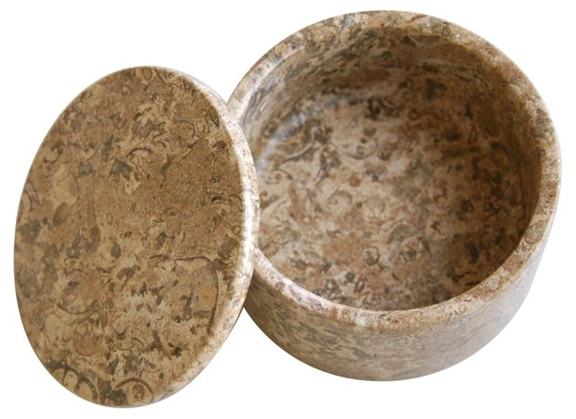 Carved Fossilized Stone Box