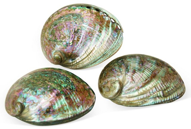 Mother-of-Pearl     Abalone Shells, S/3
