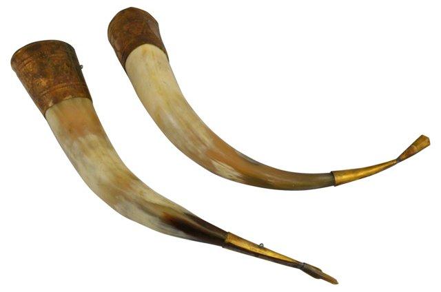 Bull Horns w/ Brass Finish, Pair